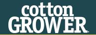 cottonGrower